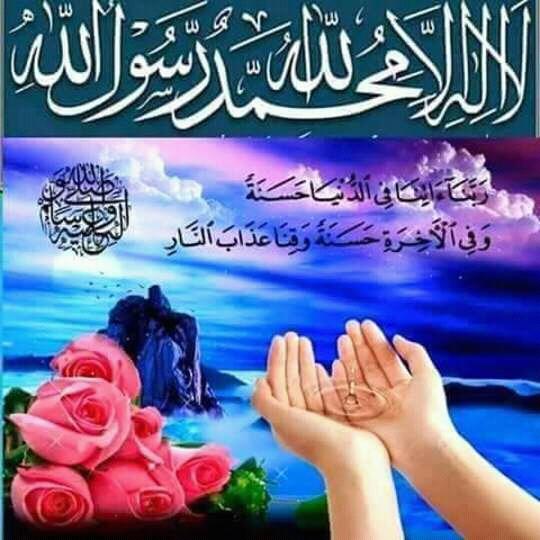FB IMG 14684785381288557