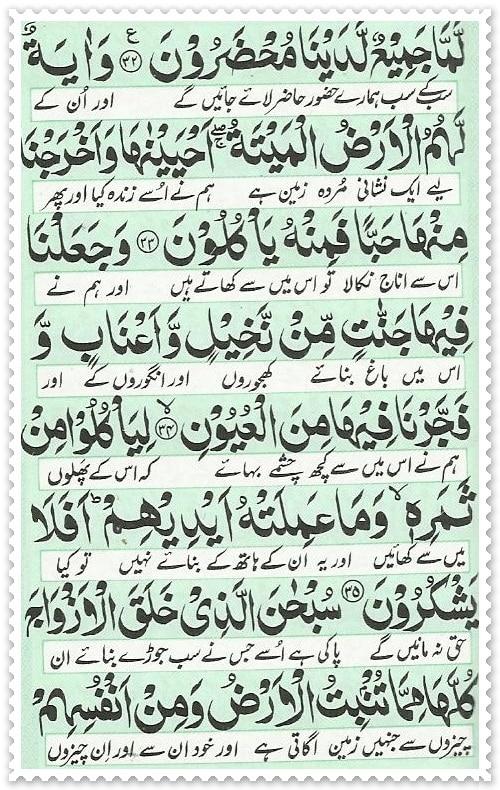 surah yaseen 07